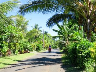クック諸島で運転したい!ビジターライセンス取得事情12月16日更新