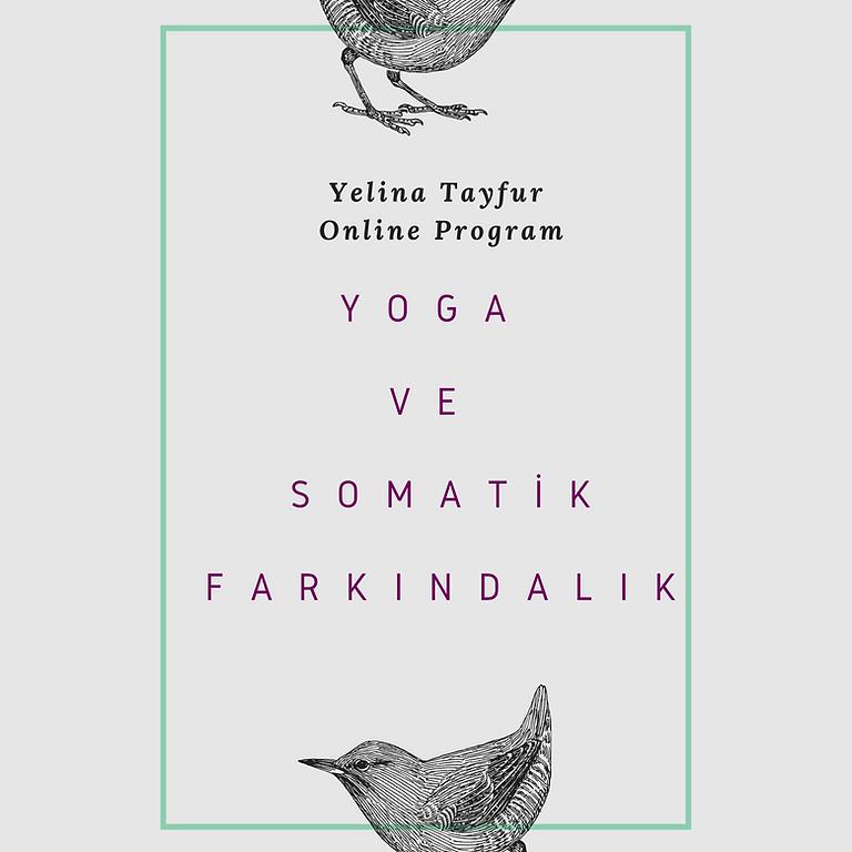 Yoga ve Somatik Farkındalık - Online Program