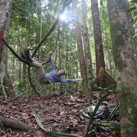 Exploring fores on the Borneo Island, Malaysia