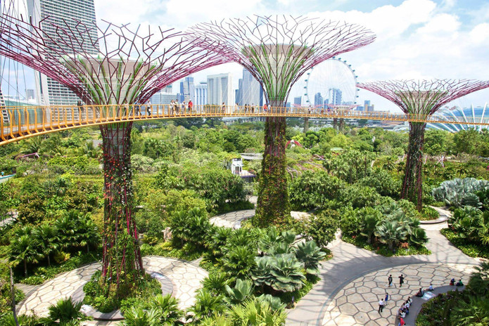 Supertrees in Singapore