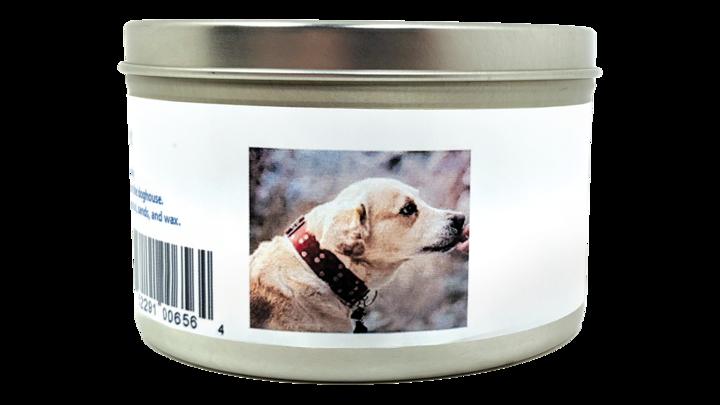 Tesla BioHealer™ for Pets 2.0