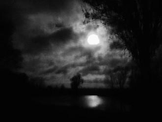 La noche siempre inspira