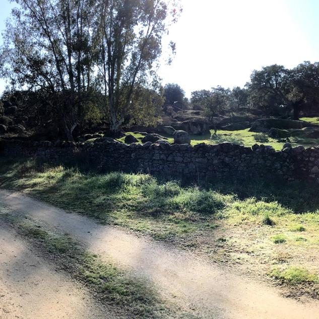 Cañada Boyal