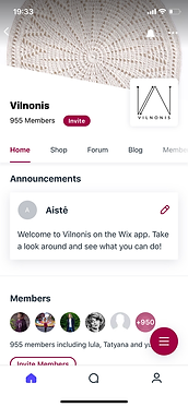 vilnonis_mobile_app_screen.png