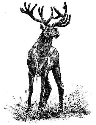 Ink drawing on paper, original hand drawn illustration