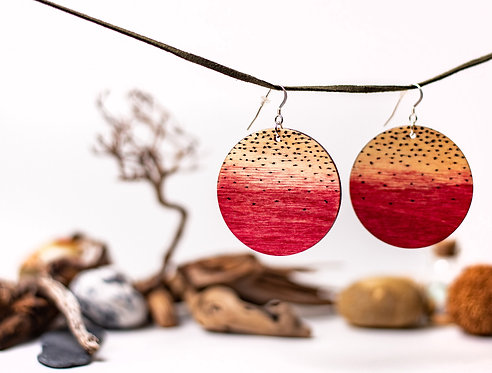 Hand painted, wooden, two sided, circle earrings, one of a kind,silver jewellery