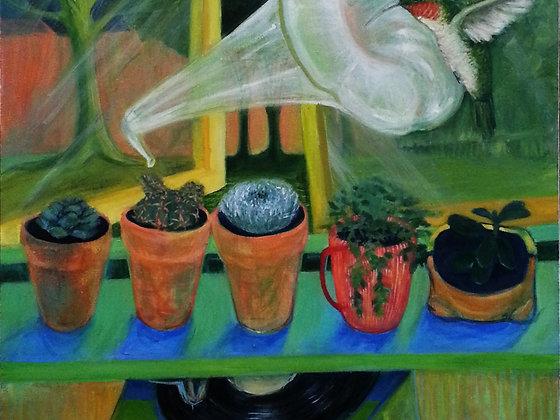 Cacti-gramophone