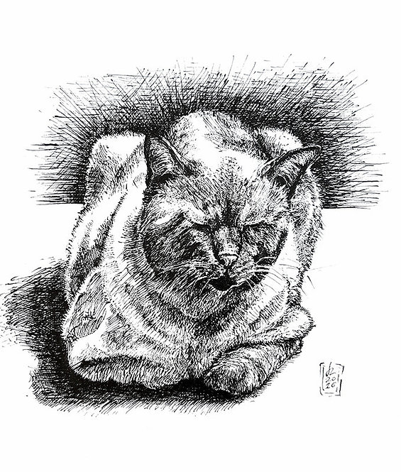 Ink drawing on paper, original hand drawn illustration, art,