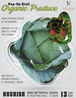 Nourish Organics - Pop-Up Shop Flyer