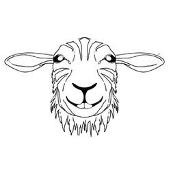 Tyger & Lamb - Logo Option