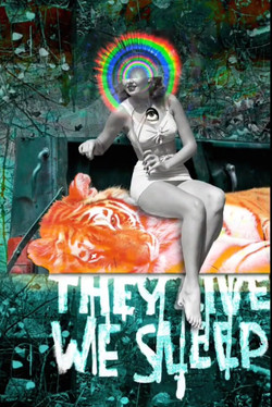 They Live, We Sleep - Digital Collage