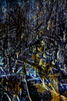 BITTER LIVING THROUGH ENTROPY 03 (TRIPTYCH)