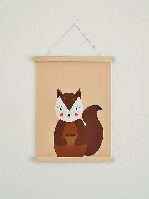 Poster - Eichhörnchen
