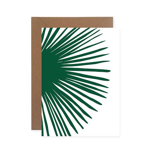 Postkarte - Meraner Palme