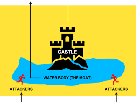 What is Economic Moat and how to find one