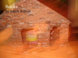 Bricks by Aaron Willem