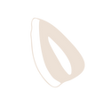 seeds pale-03.png