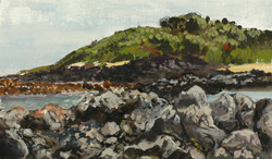 Bear Gully, Cape Liptrap NP 2014