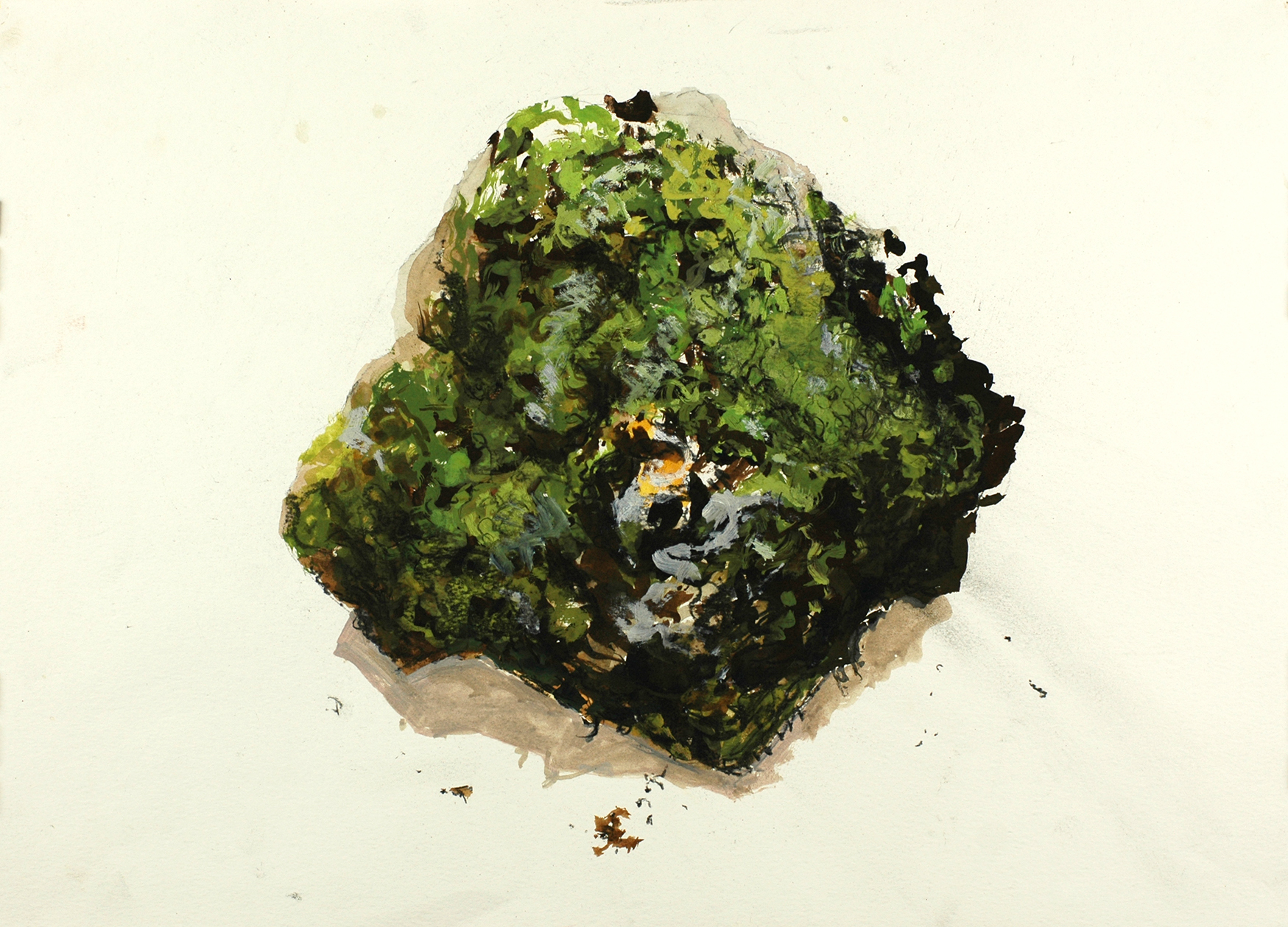 Quartz and Lichen, 2013