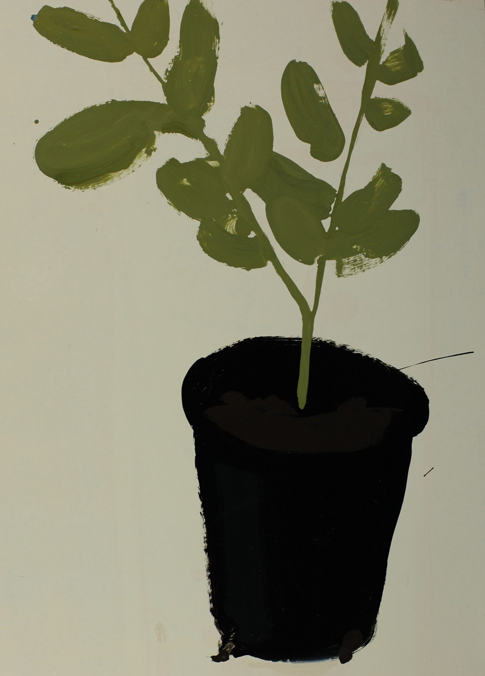 Gumtree in a Pot, 2001