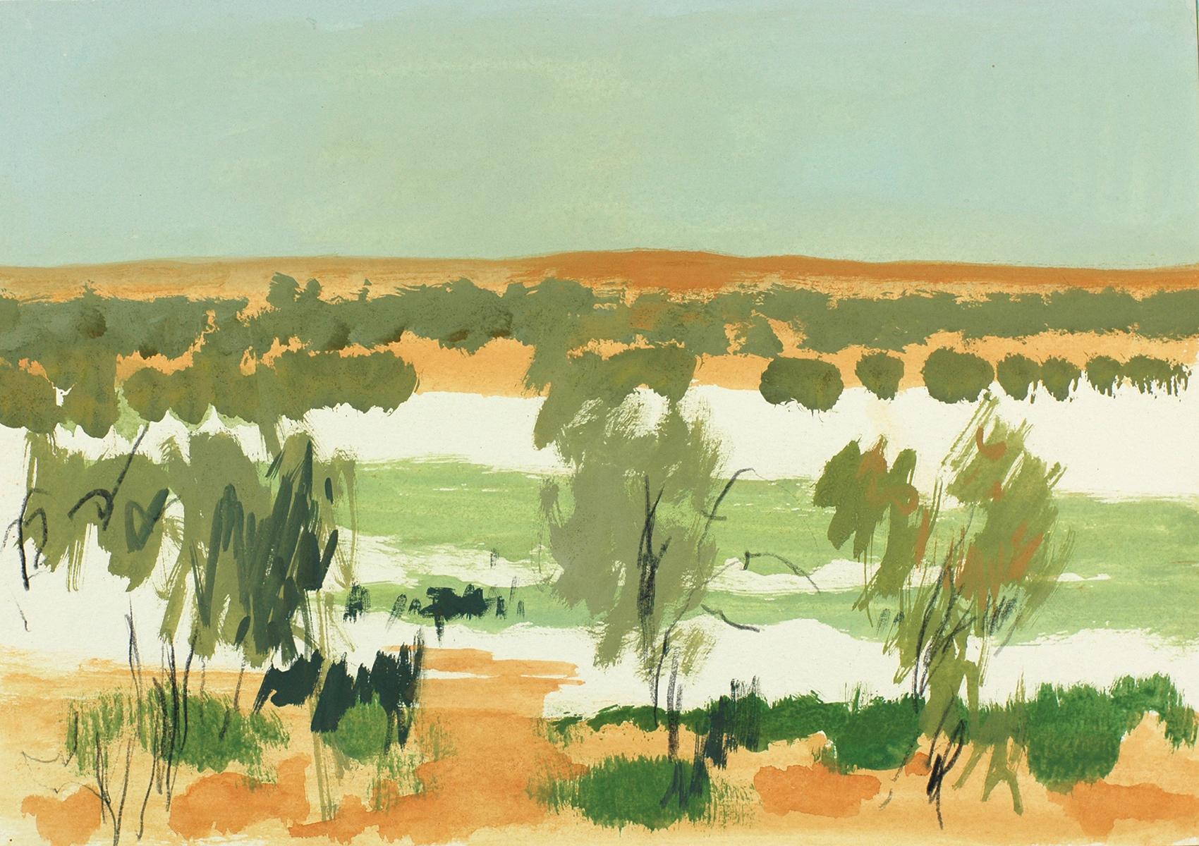 Simpson Desert 11 2009