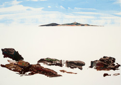 Montague Island and Mystery Bay, 2014