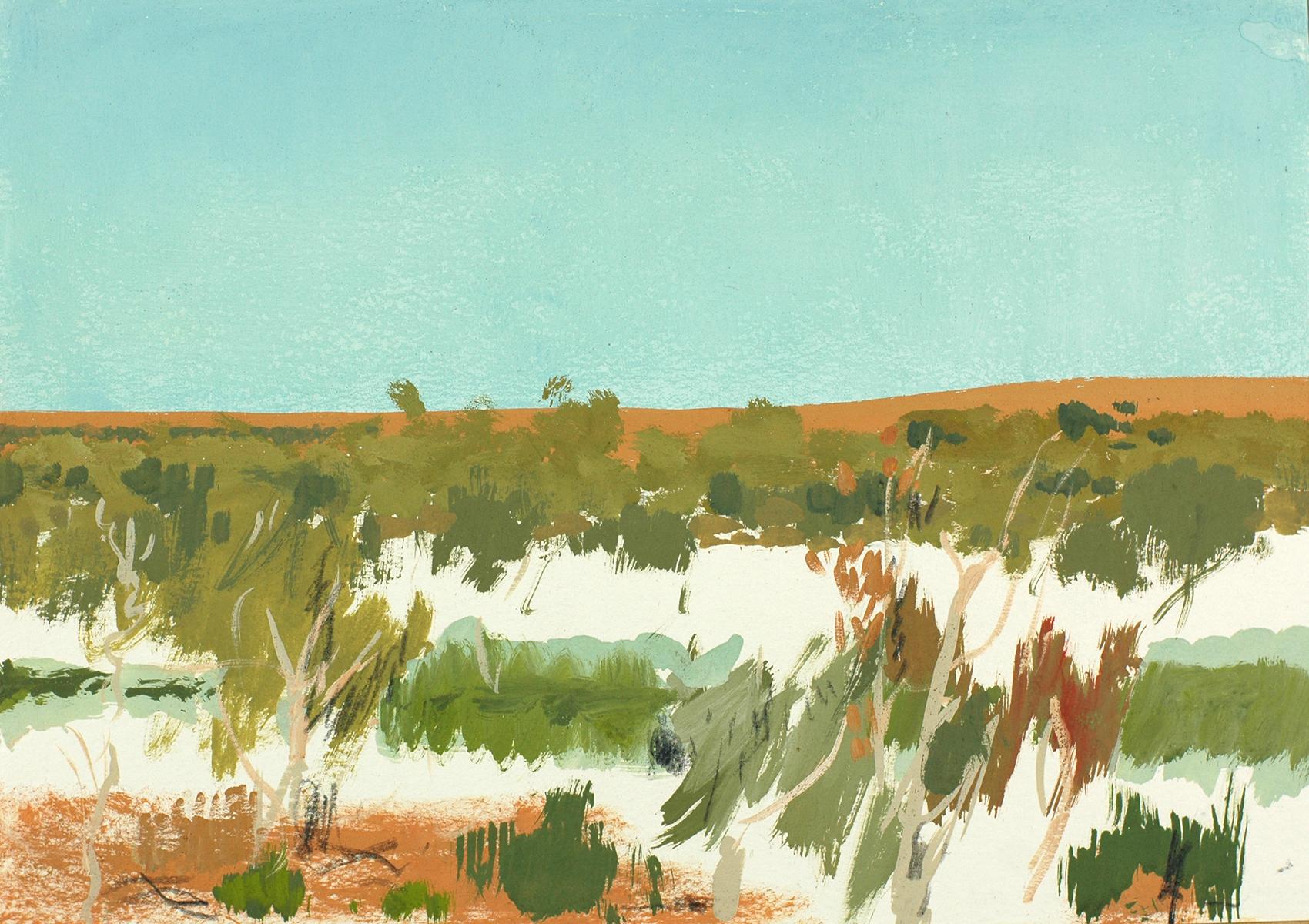 Simpson Desert 13 2009