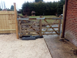 Garden fencing and gates