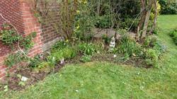 Weeded flower bed
