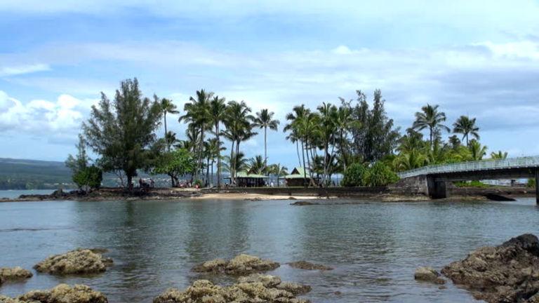 coconut island.jpg
