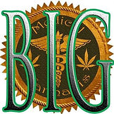 BIG Island Genetics Logo.jpg