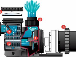 Pool Pumps & Motors