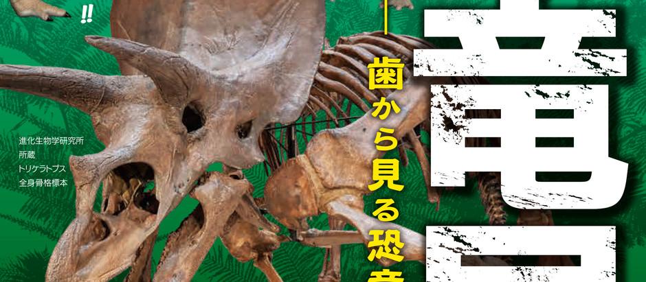 恐竜展のパンフレット用写真撮影