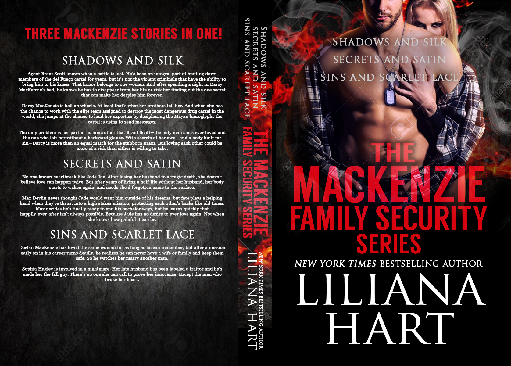 The MacKenzie Family Security Series full concept