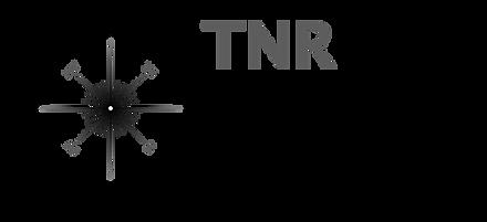 True North Services logo