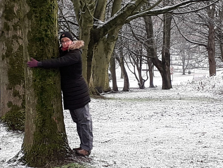 Notes from an empath:  Tree hugger