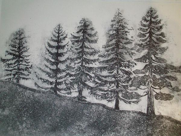 Five Trees [etching].jpg