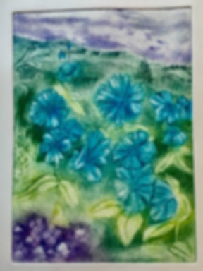 'Blue Poppies' etching [edition of 5] 35