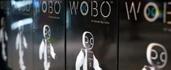 Veronicalinti-WOBO-packaging