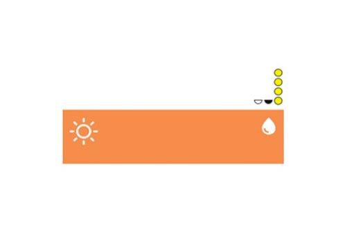 "NPM Russia Пигмент Correction colors -""Yellow Beige"""