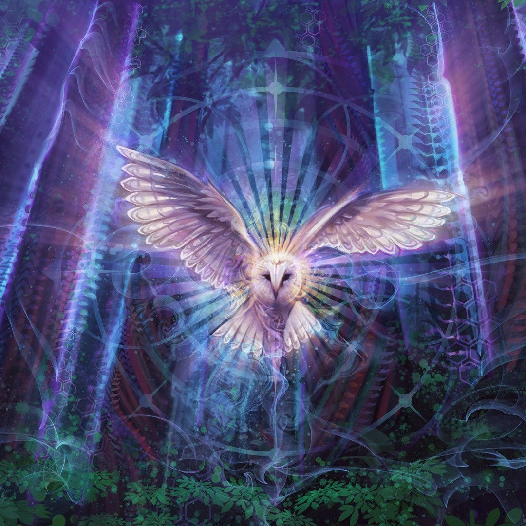 Psychic Guidance/Spirit Mediumship