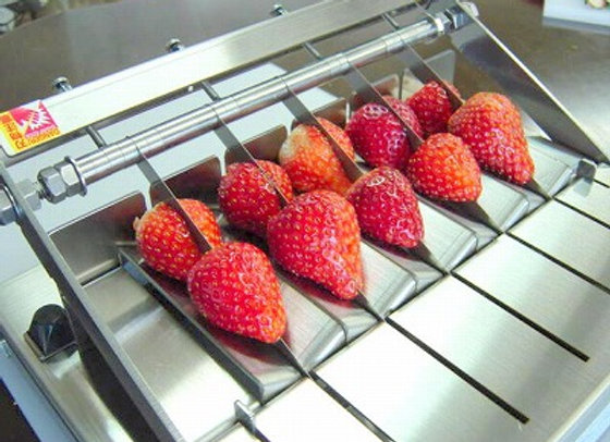 딸기 2분할 컷터