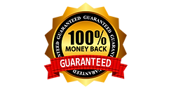 Moneyback-Free-PNG-Image.png