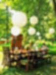 garden-766x1024.jpg