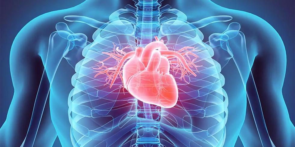 НМО. Новости кардиологии 2020. Тактика ведения сердечно-сосудистых заболеваний в период пандемии COVID-19