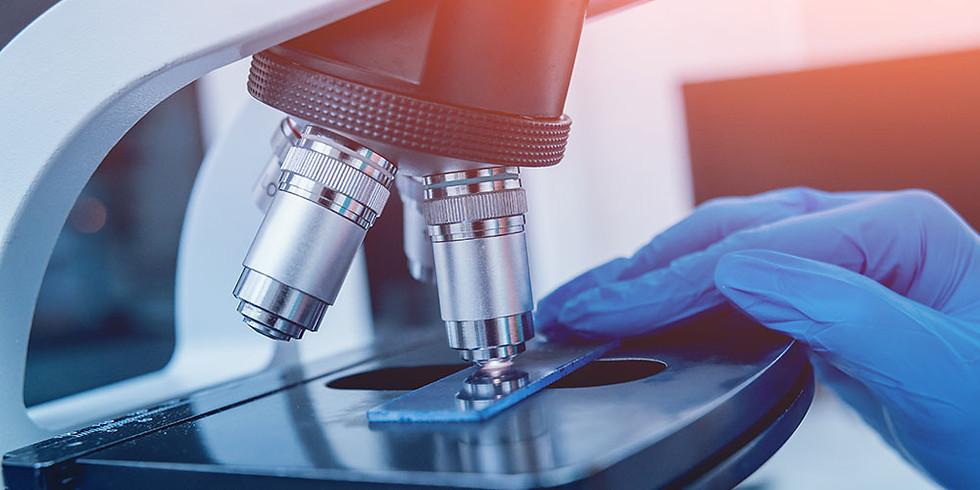 10 лабораторных критериев функциональной гипоталамической аменореи