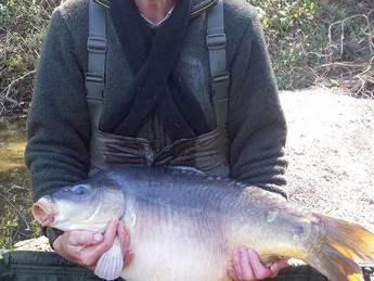 24 Hr Session, Peg 1 - Capybara Monday 27/04 to 28/04.