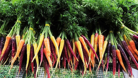 farm rainbow carrots (2).jpg