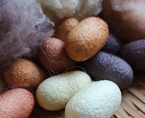 繭、真綿、和綿 Silk Cocoon, Silk Hankie, Japanese Cotton [アボカド、梅、みかん  avocado, Japanese plum, tangerine] 2021/1