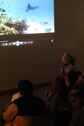 Students go on a virtual dive, choosing a location from multiple reefs around the world